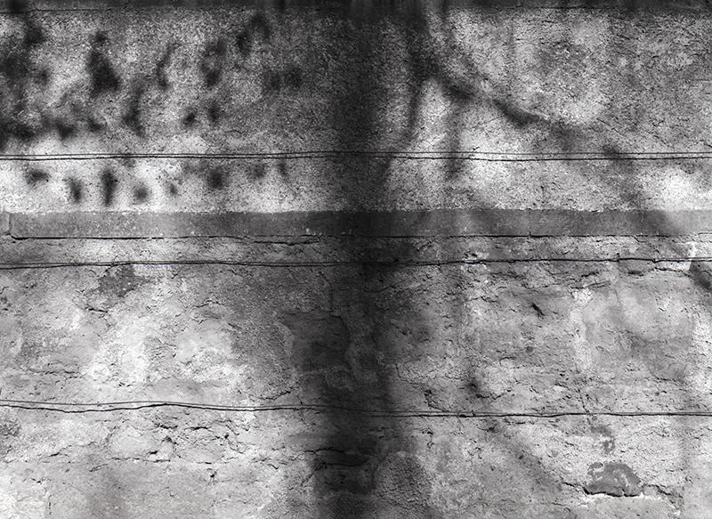 Shadows on a wall